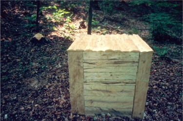 Red Maple Cube, 1988